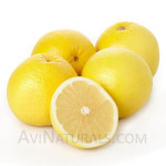 grapefruit write oil Suppliers