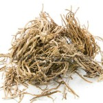 vetiver oil suppliers