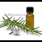 Cassia-Essential-Oil