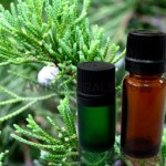cypress oil suppliers