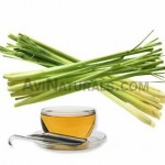 Lemon-Grass-Oil