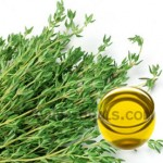 thyme oil suppliers