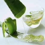 Certified Organic Aloe Vera Gel Suppliers