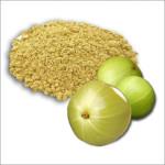 amla powder Suppliers