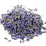 dry lavender flower Suppliers