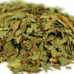 eucalyptus-dried-leaves