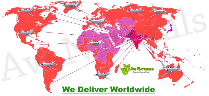 We-Deliver-Worldwide