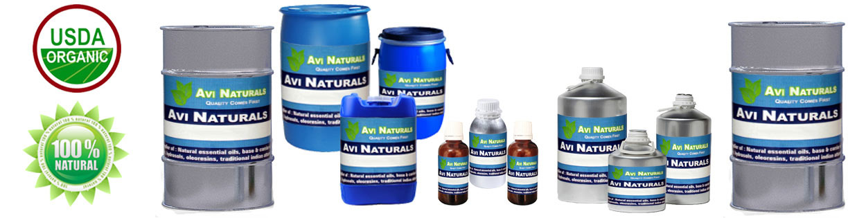 Carrier Oils Wholesale, Buy Organic Carrier Oils at Bulk Prices